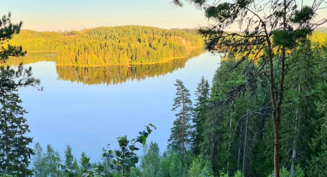 Kuhmoisten Linnavuorelta aukeaa näkymä tyynelle järvelle ja vastapäisen rannan metsikköihin ja saariin.